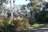 Lot 40 Sea Marsh Road - Photo 4