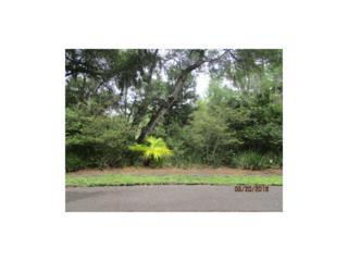 6 Sound Point Place, Fernandina Beach, FL 32034 (MLS #69618) :: Berkshire Hathaway HomeServices Chaplin Williams Realty