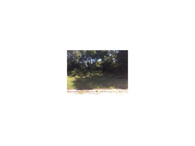 Estrada Street, Fernandina Beach, FL 32034 (MLS #76182) :: Berkshire Hathaway HomeServices Chaplin Williams Realty