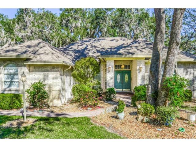 1582 Canopy Drive, Amelia Island, FL 32034 (MLS #78873) :: Berkshire Hathaway HomeServices Chaplin Williams Realty