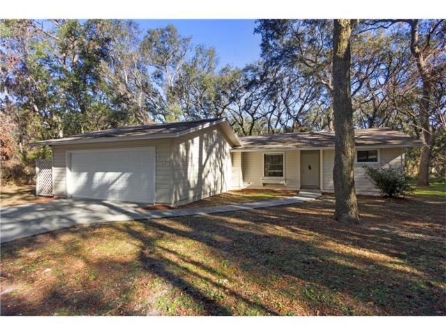 2113 Thrasher Lane, Fernandina Beach, FL 32034 (MLS #79289) :: Berkshire Hathaway HomeServices Chaplin Williams Realty