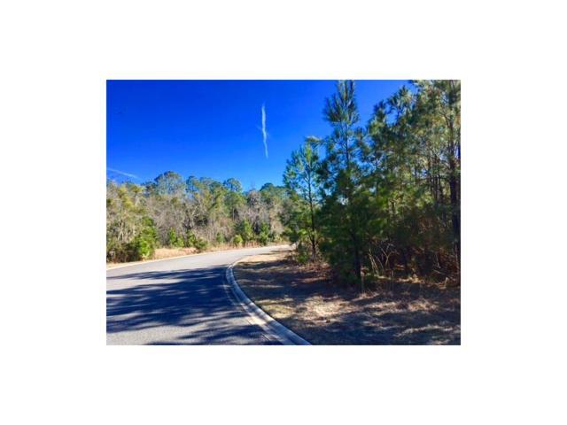 95290 Brookhill Place, Fernandina Beach, FL 32034 (MLS #79297) :: Berkshire Hathaway HomeServices Chaplin Williams Realty