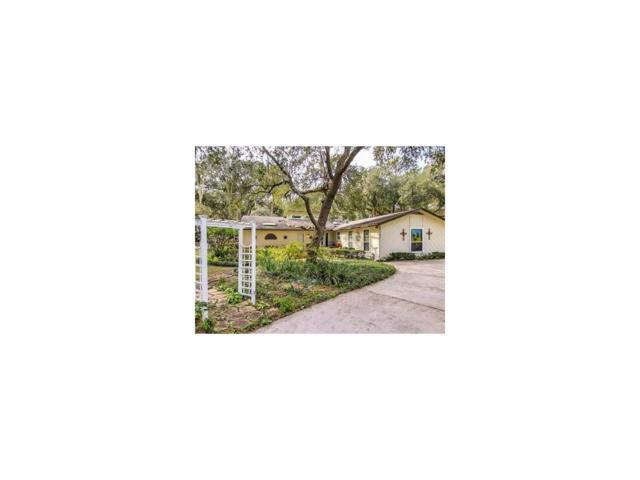 96041 Piney Island Drive, Fernandina Beach, FL 32034 (MLS #79579) :: Berkshire Hathaway HomeServices Chaplin Williams Realty