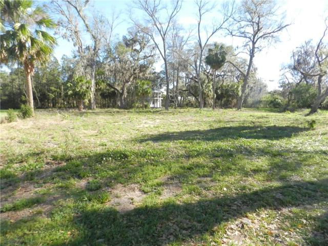 Heath Point Lane, Fernandina Beach, FL 32034 (MLS #79634) :: Berkshire Hathaway HomeServices Chaplin Williams Realty