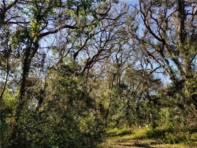 LOT 80 Genoa Drive, Amelia Island, FL 32034 (MLS #79798) :: Berkshire Hathaway HomeServices Chaplin Williams Realty