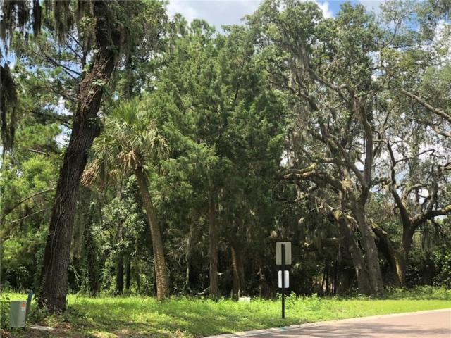 28047 Waterford (Lot 81) Lane, Yulee, FL 32097 (MLS #80893) :: Berkshire Hathaway HomeServices Chaplin Williams Realty