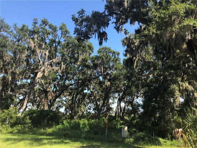 96210 Soap Creek Drive, Fernandina Beach, FL 32034 (MLS #80908) :: Berkshire Hathaway HomeServices Chaplin Williams Realty