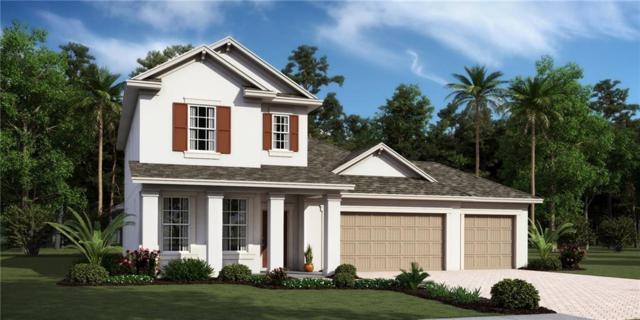 85071 Williston Court, Fernandina Beach, FL 32034 (MLS #81168) :: Berkshire Hathaway HomeServices Chaplin Williams Realty