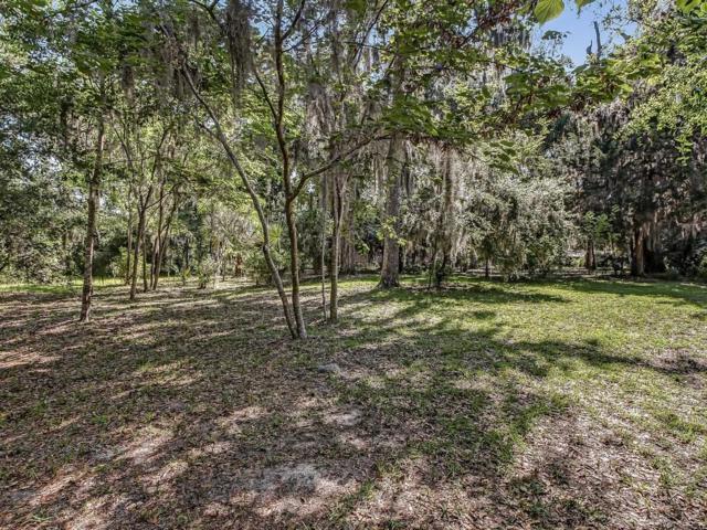 Live Oak Drive, Fernandina Beach, FL 32034 (MLS #81412) :: Berkshire Hathaway HomeServices Chaplin Williams Realty