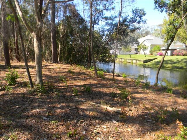 96235 Park Place, Fernandina Beach, FL 32034 (MLS #81479) :: Berkshire Hathaway HomeServices Chaplin Williams Realty