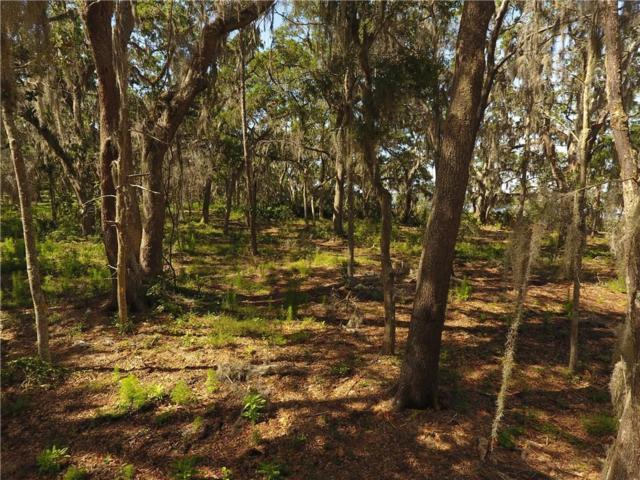 46 Cord Grass Court, Amelia Island, FL 32034 (MLS #81978) :: Berkshire Hathaway HomeServices Chaplin Williams Realty