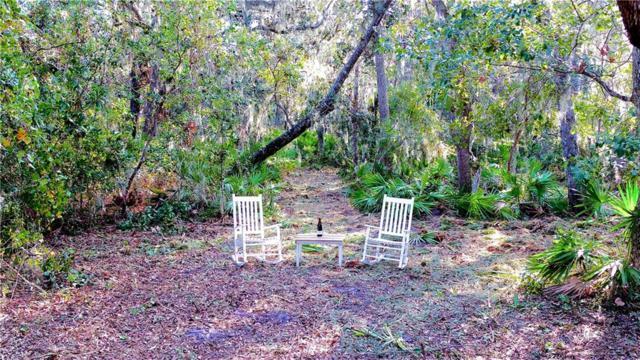 96056 Soap Creek Drive, Fernandina Beach, FL 32034 (MLS #82628) :: Berkshire Hathaway HomeServices Chaplin Williams Realty