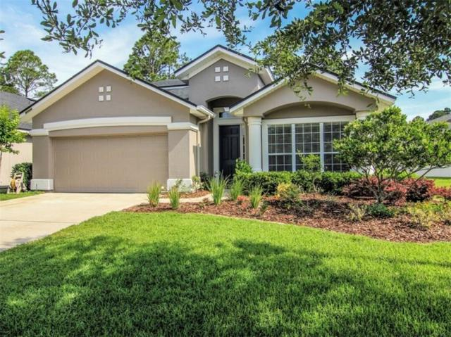 95126 Hither Hills Way, Fernandina Beach, FL 32034 (MLS #82829) :: Berkshire Hathaway HomeServices Chaplin Williams Realty