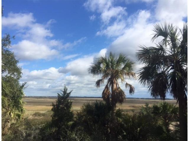 96588 E Soap Creek Drive, Fernandina Beach, FL 32034 (MLS #82990) :: Berkshire Hathaway HomeServices Chaplin Williams Realty