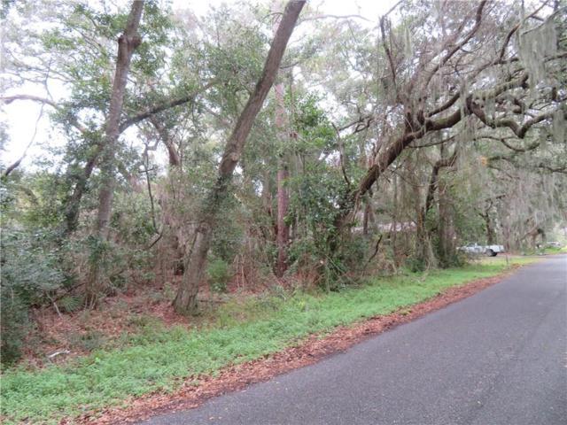 LOT 21 Ian Drive, Fernandina Beach, FL 32034 (MLS #83019) :: Berkshire Hathaway HomeServices Chaplin Williams Realty
