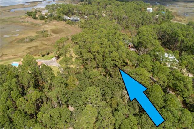 Limpkin Lane, Fernandina Beach, FL 32034 (MLS #84501) :: Berkshire Hathaway HomeServices Chaplin Williams Realty