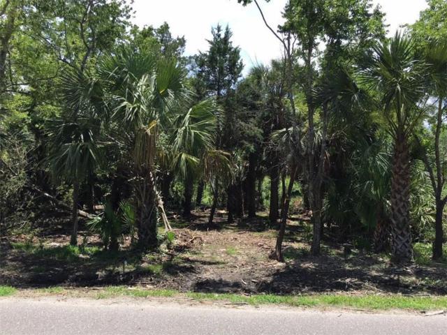 Calhoun Street, Fernandina Beach, FL 32034 (MLS #85708) :: Berkshire Hathaway HomeServices Chaplin Williams Realty
