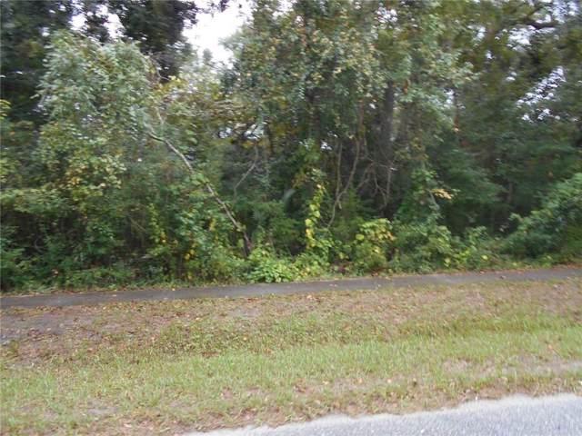 Lewis Street, Amelia Island, FL 32034 (MLS #86908) :: Berkshire Hathaway HomeServices Chaplin Williams Realty
