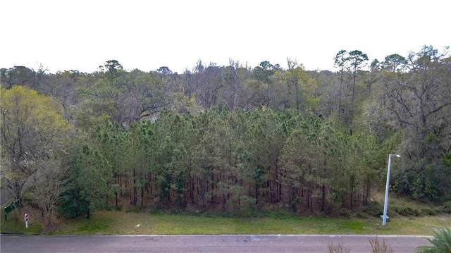Lot 1 Heath Point Lane, Fernandina Beach, FL 32034 (MLS #93752) :: Berkshire Hathaway HomeServices Chaplin Williams Realty