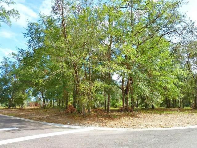 28297 Grandview Manor, Yulee, FL 32097 (MLS #96385) :: Engel & Völkers Jacksonville