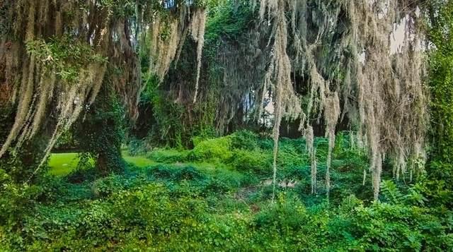 96189 Park Place, Fernandina Beach, FL 32034 (MLS #96614) :: Berkshire Hathaway HomeServices Chaplin Williams Realty