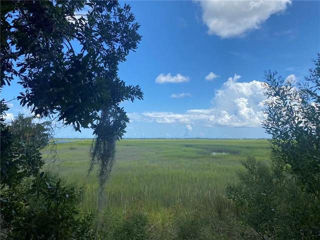96720 Soap Creek Drive, Fernandina Beach, FL 32034 (MLS #96658) :: Berkshire Hathaway HomeServices Chaplin Williams Realty