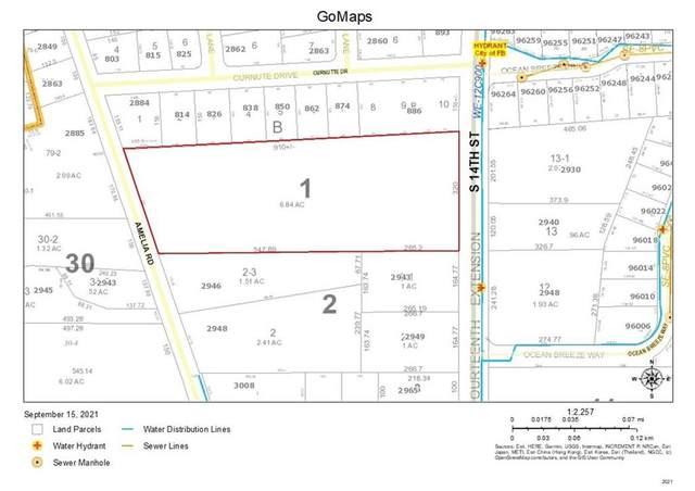 Amelia Road, Fernandina Beach, FL 32034 (MLS #96662) :: Berkshire Hathaway HomeServices Chaplin Williams Realty