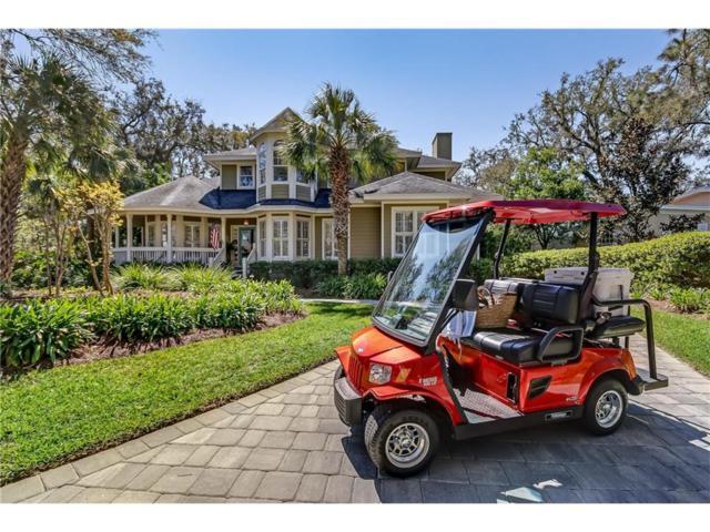 2606 Blackbeard Place, Fernandina Beach, FL 32034 (MLS #76610) :: Berkshire Hathaway HomeServices Chaplin Williams Realty