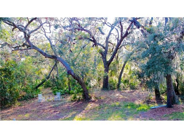 96056 Soap Creek Drive, Fernandina Beach, FL 32034 (MLS #78574) :: Berkshire Hathaway HomeServices Chaplin Williams Realty