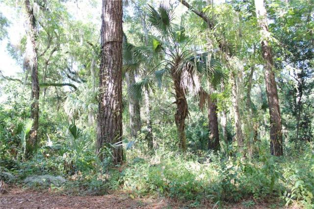 LOT 22 Hickory Lane, Amelia Island, FL 32034 (MLS #80407) :: Berkshire Hathaway HomeServices Chaplin Williams Realty