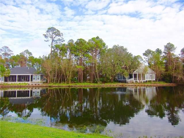 96695 Soap Creek Drive, Fernandina Beach, FL 32034 (MLS #86526) :: Berkshire Hathaway HomeServices Chaplin Williams Realty
