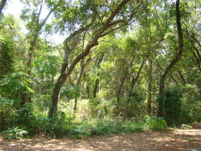 Lot 117 Beach Wood Road, Fernandina Beach, FL 32034 (MLS #81710) :: Berkshire Hathaway HomeServices Chaplin Williams Realty