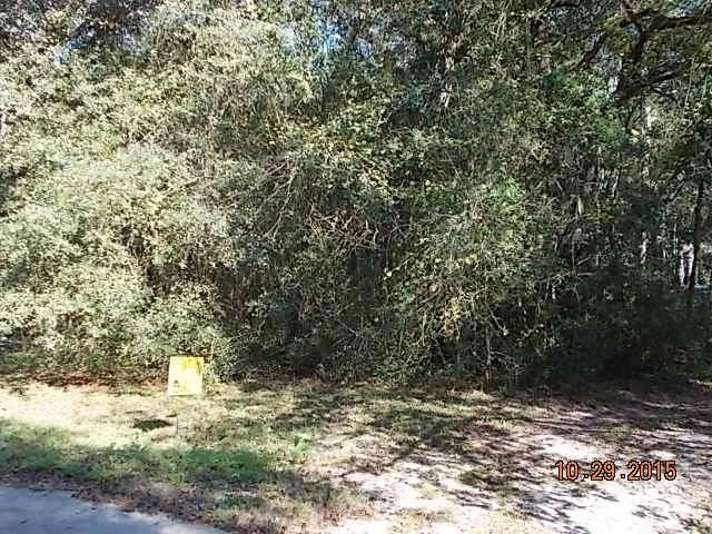 LOT 31 Lofton Court, Yulee, FL 32097 (MLS #79855) :: Berkshire Hathaway HomeServices Chaplin Williams Realty