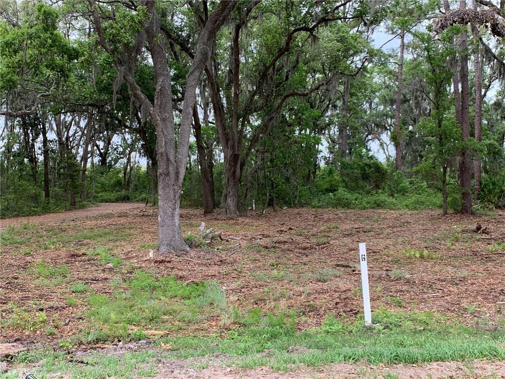 19 Sweetgrass Court - Photo 1