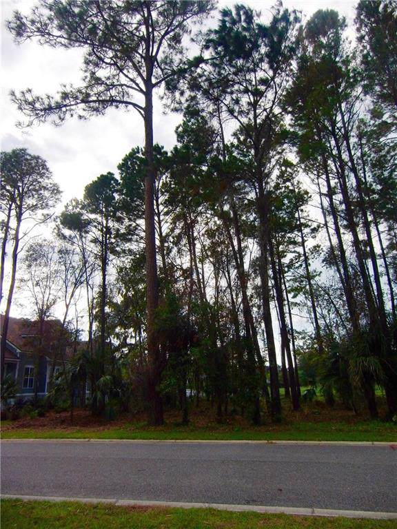 96695 Soap Creek Drive, Fernandina Beach, FL 32034 (MLS #86526) :: Berkshire Hathaway HomeServices Chaplin Williams Realty