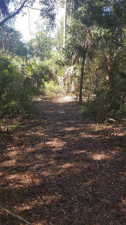Duck Lake Drive, Fernandina Beach, FL 32034 (MLS #86755) :: Berkshire Hathaway HomeServices Chaplin Williams Realty