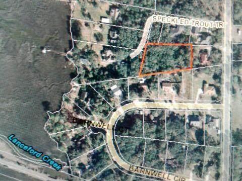 151 Barnwell Road, Fernandina Beach, FL 32034 (MLS #87847) :: Berkshire Hathaway HomeServices Chaplin Williams Realty