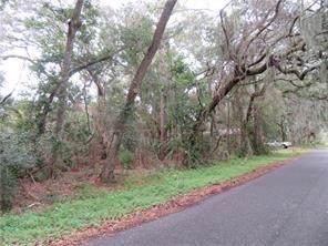 LOT 21 Ian Drive, Fernandina Beach, FL 32034 (MLS #87897) :: Berkshire Hathaway HomeServices Chaplin Williams Realty