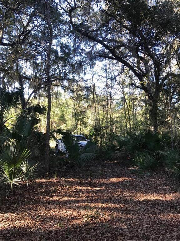 96172 High Pointe Drive, Fernandina Beach, FL 32034 (MLS #90498) :: Berkshire Hathaway HomeServices Chaplin Williams Realty