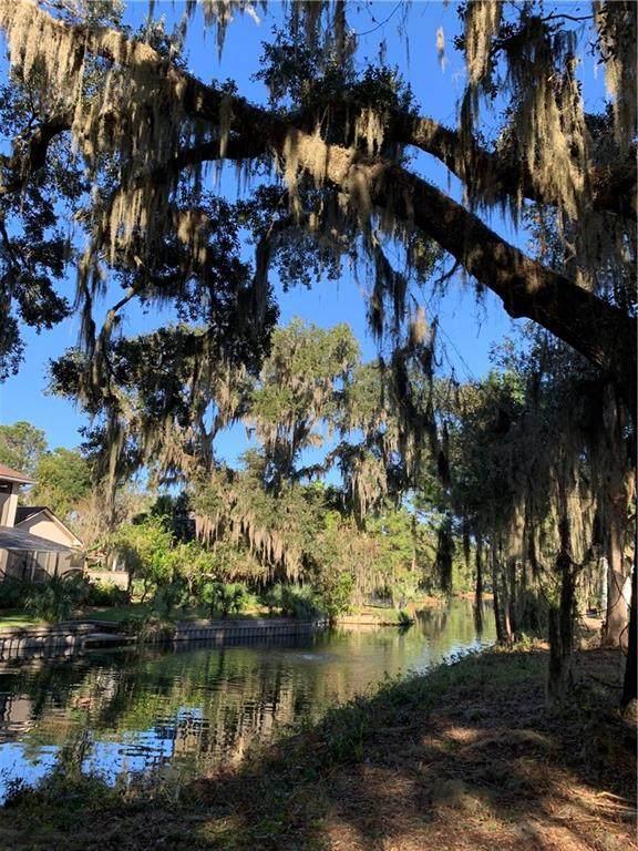Park Place, Fernandina Beach, FL 32034 (MLS #93010) :: The DJ & Lindsey Team