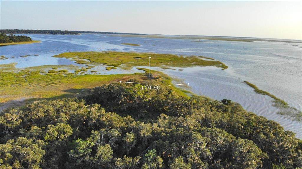 161 Crane Island Drive - Photo 1