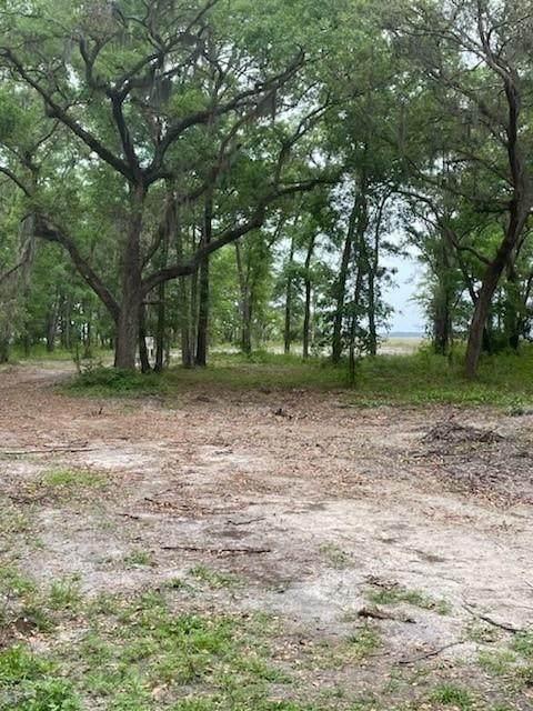 Lot 4 Holly Point Drive, Fernandina Beach, FL 32034 (MLS #94701) :: Berkshire Hathaway HomeServices Chaplin Williams Realty