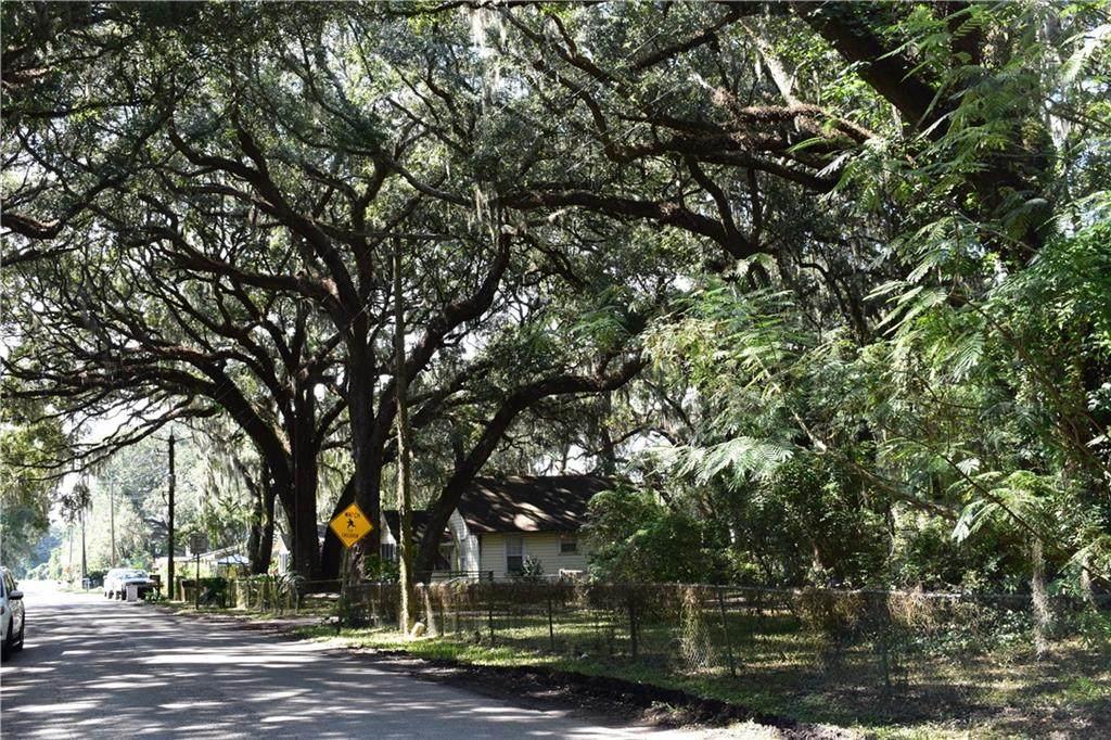 797 Old Amelia Avenue - Photo 1