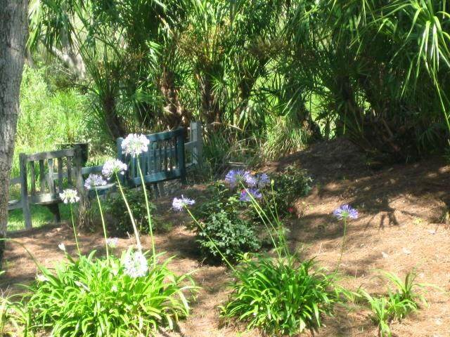LOT 2 Lewis Street, Amelia Island, FL 32034 (MLS #86580) :: Berkshire Hathaway HomeServices Chaplin Williams Realty