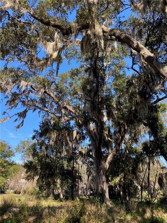 96123 Soap Creek Drive, Fernandina Beach, FL 32034 (MLS #87674) :: Berkshire Hathaway HomeServices Chaplin Williams Realty