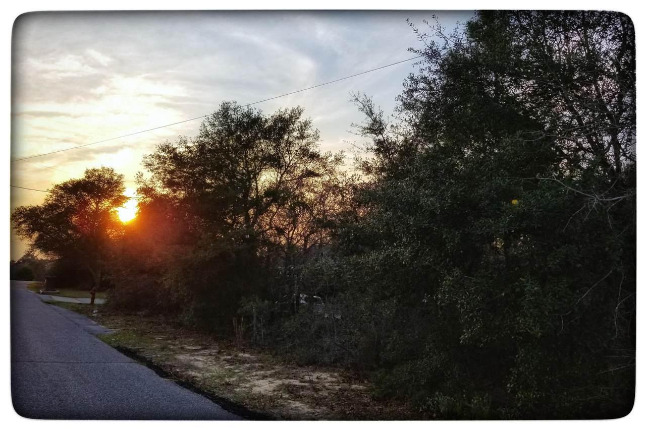 9430 Bone Bluff Drive - Photo 1