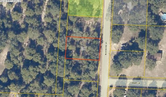 LOT 34 Bluebird Street, Milton, FL 32583 (MLS #792002) :: ResortQuest Real Estate
