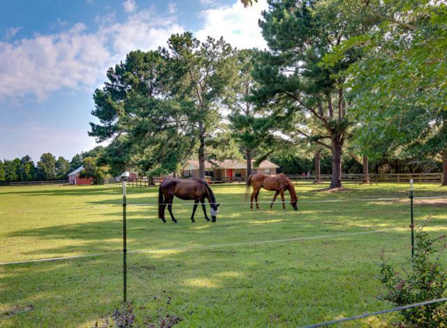5524 Forest Hills Lane, Milton, FL 32570 (MLS #802590) :: ResortQuest Real Estate