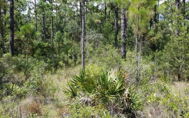 0 Mary Kitchens Road, Milton, FL 32583 (MLS #812224) :: ResortQuest Real Estate
