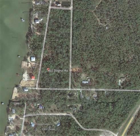 802 Dolphin Road, Milton, FL 32583 (MLS #884135) :: Levin Rinke Realty